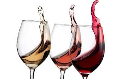 cata vins